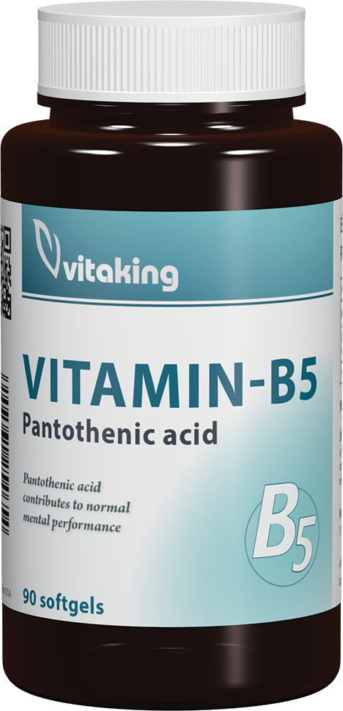 VitaKing Vitamin B5 90 caps